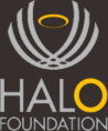 footer-HALO-logo
